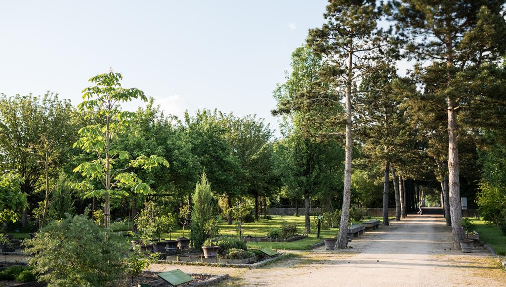 jardin-botnaique-visite